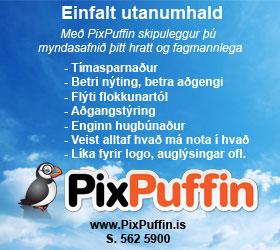Pixpuffin fyrsti banner